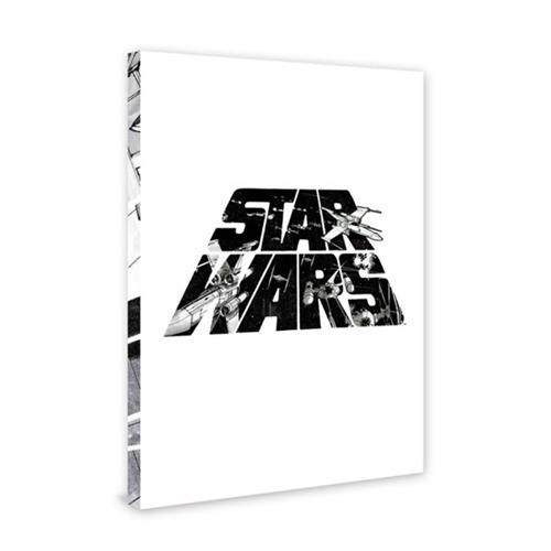 スターウォーズ アート ポスター STARWARS ポスターブック 販売